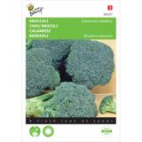 broccoli kweken