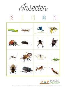 Insecten bingo   Gratis downloaden